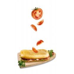 Sandwich maker Tefal SM1570
