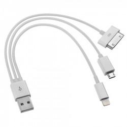 Câble USB 4 en 1 Pour SmartPhone