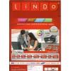 100x Etiquettes LINDO 100/1E / 210 x 148.5 mm
