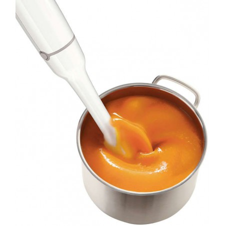 Mixeur plongeant 4-en-1 Cuisinart CSB801E