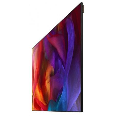 "Ecran Samsung Pro UE55D 55"" LED FULL HD"