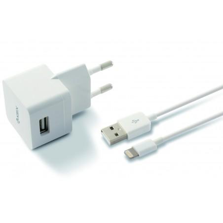 Chargeur Secteur USB + Câble USB vers Lightning