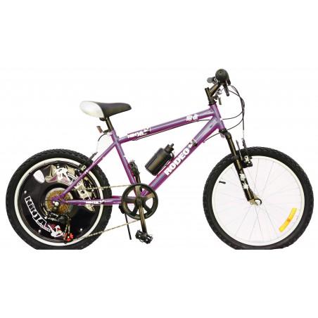 """Bicyclette VTT Ninja Garçon 20"""""""