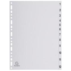 Intercalaires Imprimés Numériques Exacompta 12 positions A4