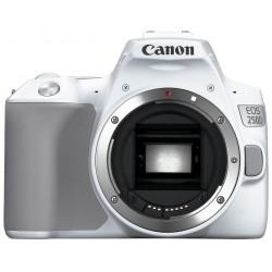 Appareil Photo Reflex Numérique Canon EOS 250D / 4K / 18-55mm IS
