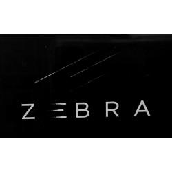 Abonnement IPTV Zebra 12 mois